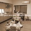 鉄骨住宅リノベーション K様邸 写真